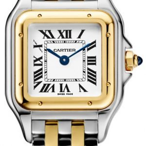 Cartier Panthere De Cartier W2pn0006 Kello Hopea / 18k