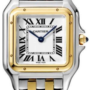 Cartier Panthere De Cartier W2pn0007 Kello Hopea / 18k