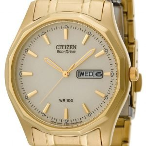 Citizen Eco Drive 180 Bm8432-53p Kello